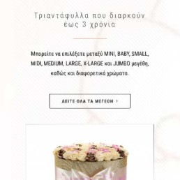 Κατασκευή eshop Για ανθοπωλείο - Διεθνές πωλήσεις