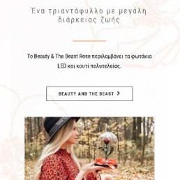 Responsive Web Design Eshop Για Ανθοπωλείο