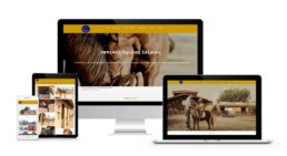 Web Design For equestrian club